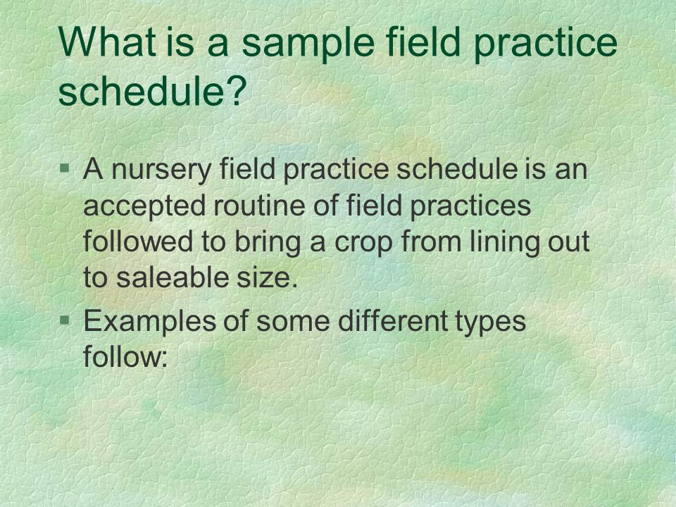 What is a sample field practice schedule.