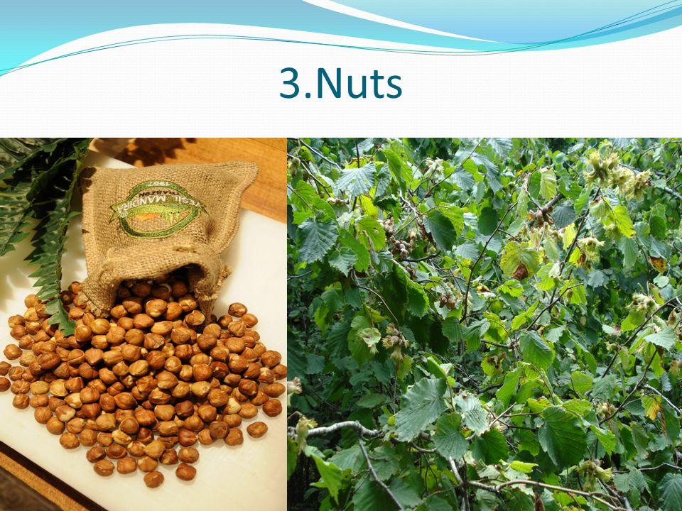 3.Nuts
