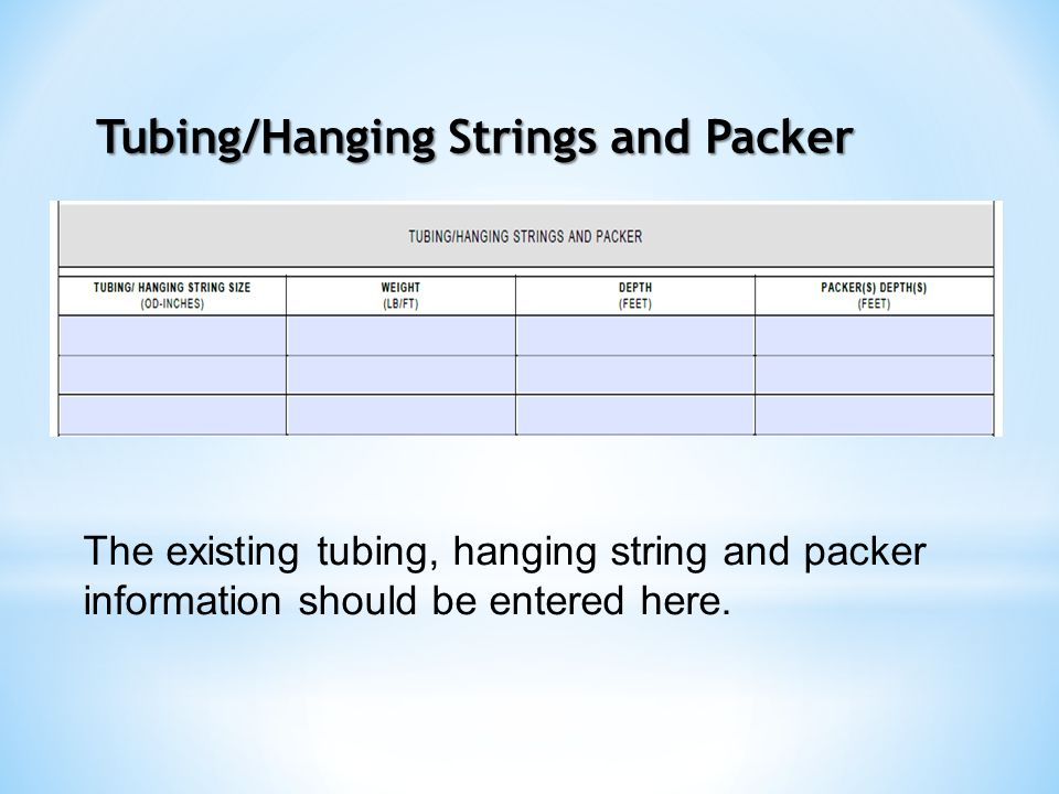 Tubing/Hanging Strings and Packer The existing tubing, hanging string and packer information should be entered here.