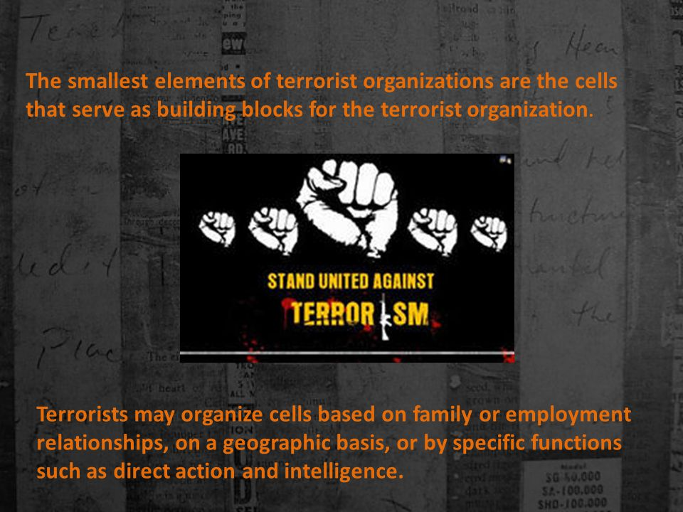 The smallest elements of terrorist organizations are the cells that serve as building blocks for the terrorist organization.