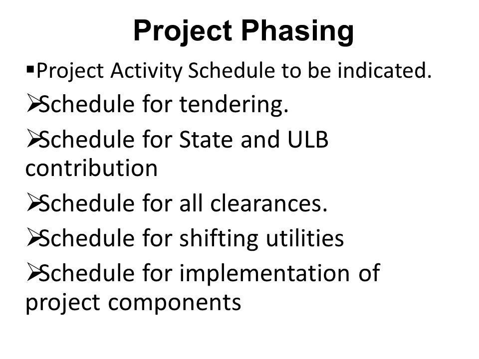 Project Phasing  Project Activity Schedule to be indicated.
