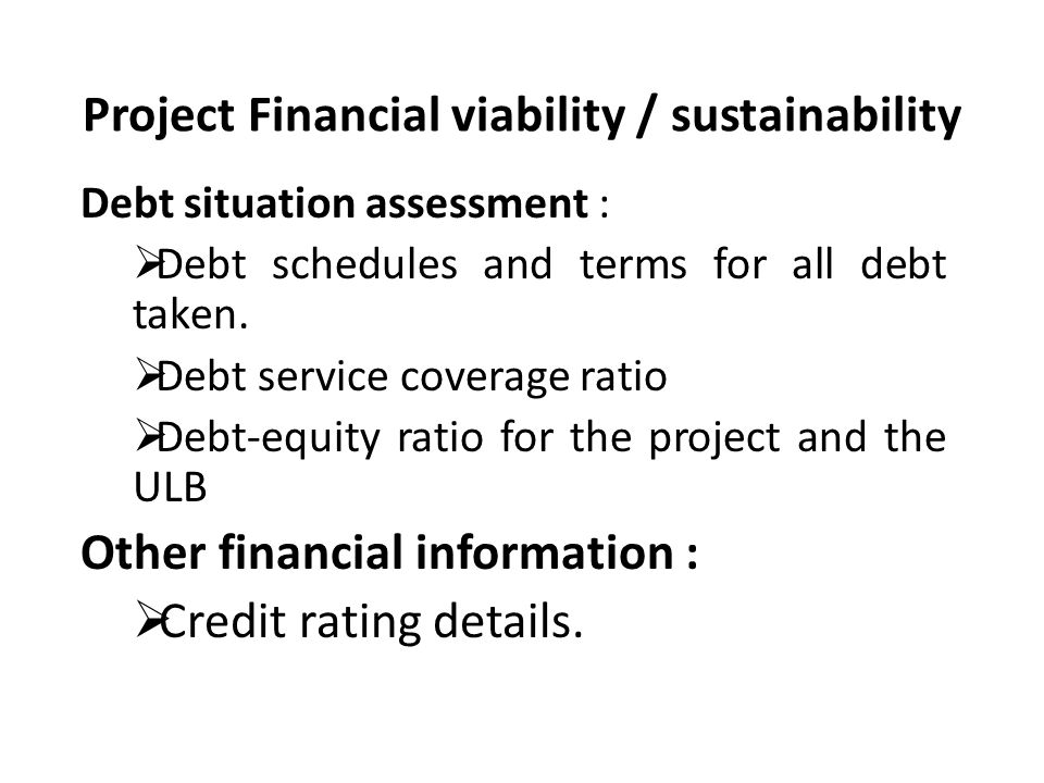Project Financial viability / sustainability Debt situation assessment :  Debt schedules and terms for all debt taken.