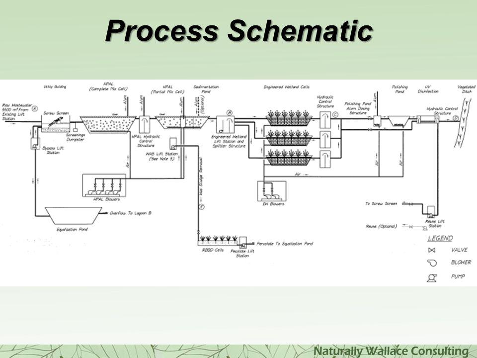 Process Schematic