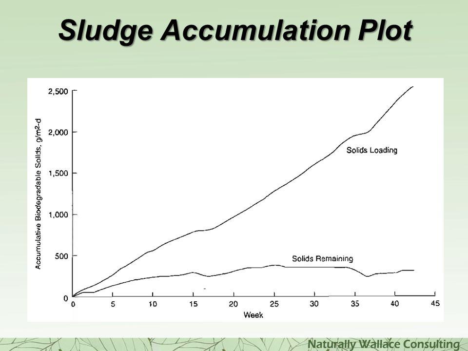 Sludge Accumulation Plot
