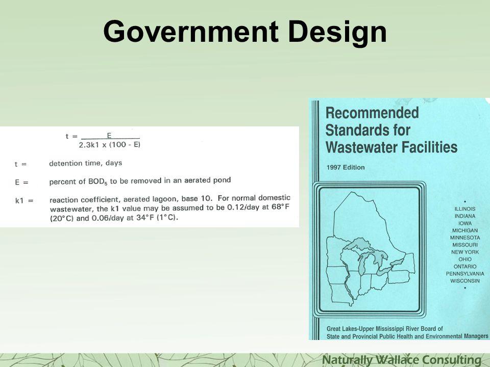 Government Design