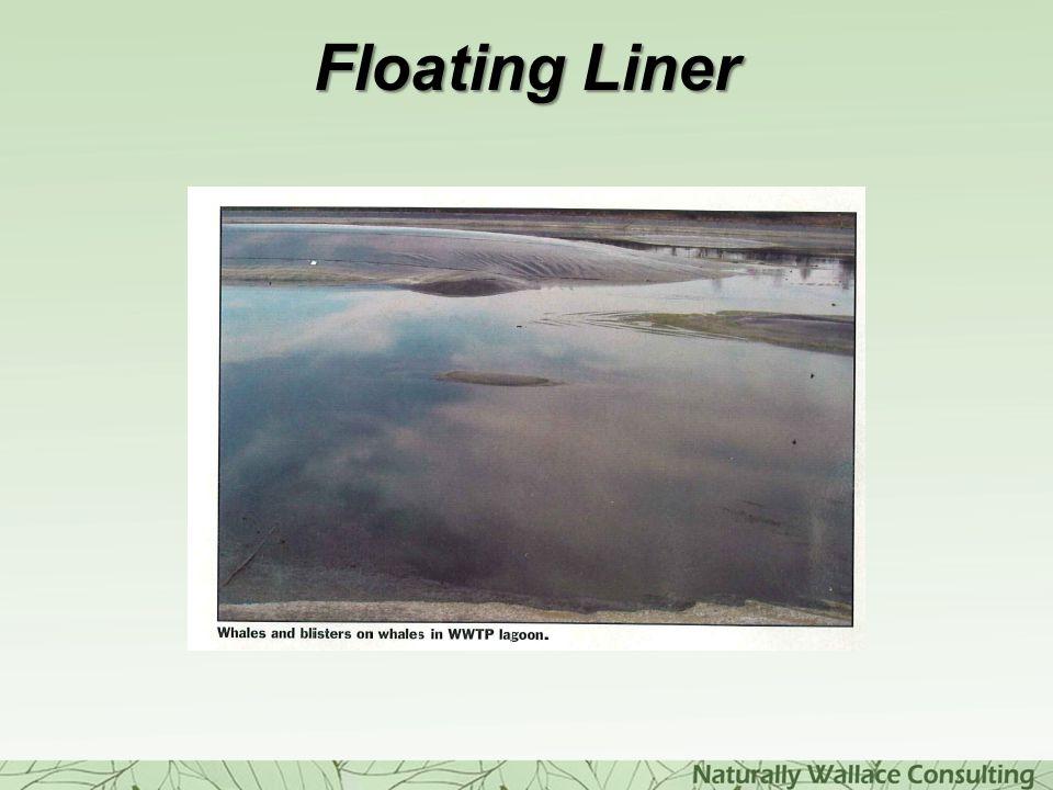 Floating Liner