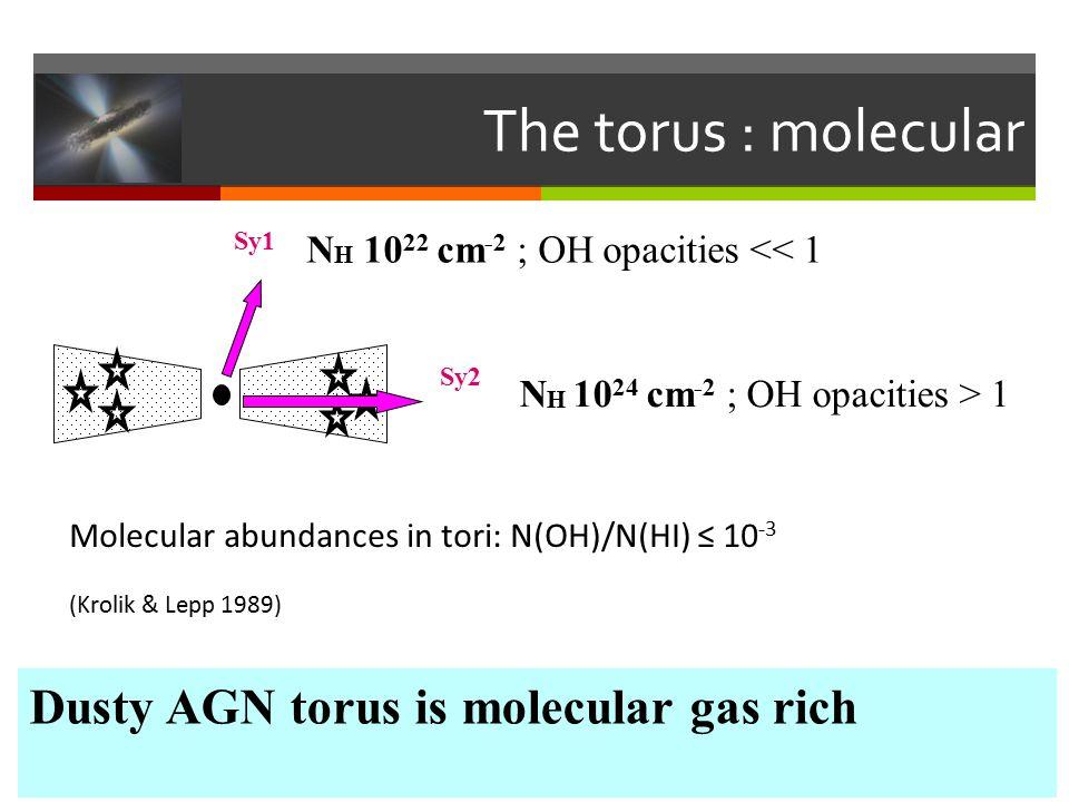 The torus : molecular Sy1 Sy2 N H 10 22 cm -2 ; OH opacities << 1 N H 10 24 cm -2 ; OH opacities > 1 Molecular abundances in tori: N(OH)/N(HI) ≤ 10 -3 (Krolik & Lepp 1989) Dusty AGN torus is molecular gas rich