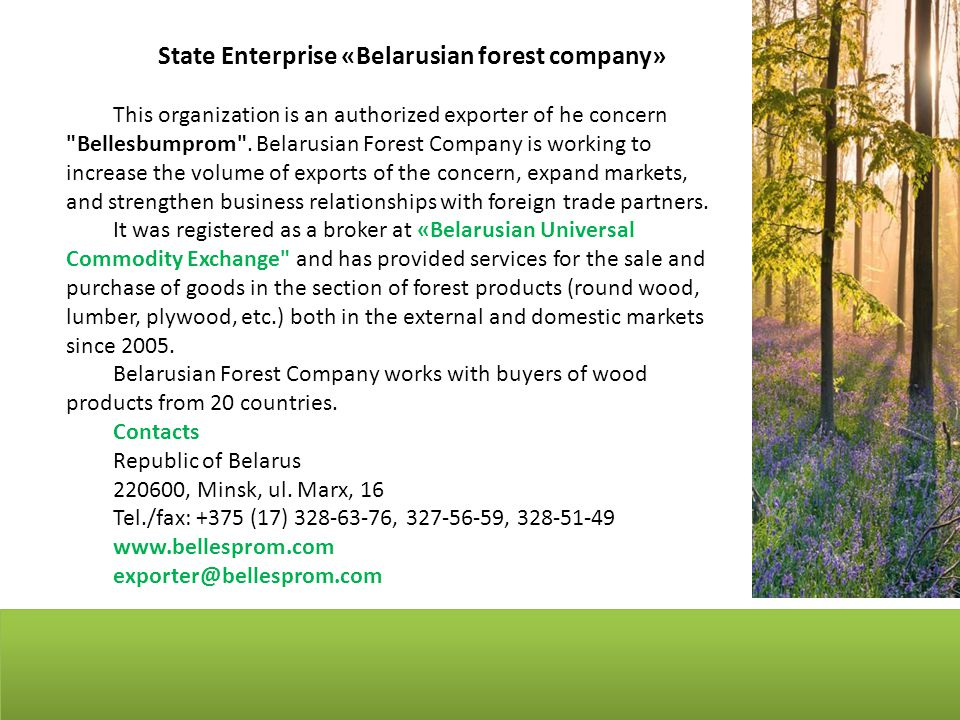State Enterprise «Belarusian forest company» This organization is an authorized exporter of he concern Bellesbumprom .