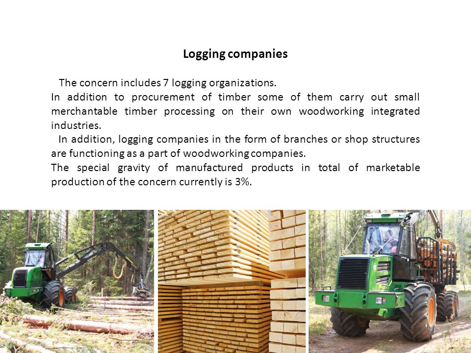 Logging companies The concern includes 7 logging organizations.