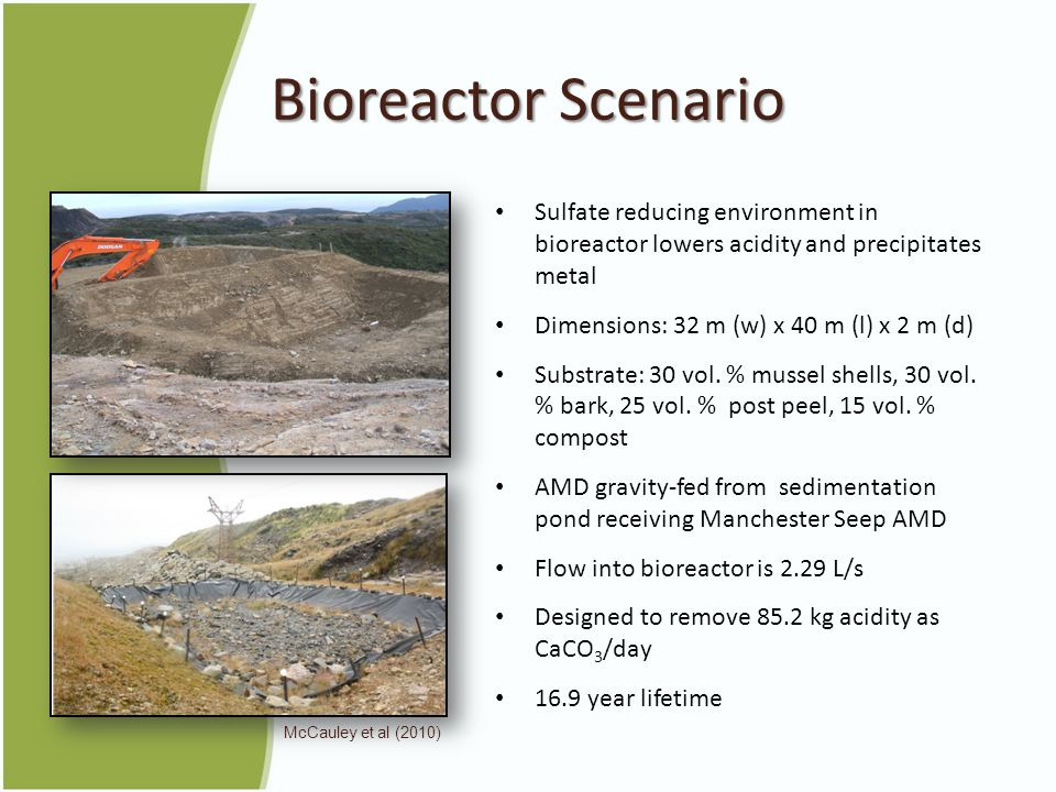 Bioreactor Scenario Sulfate reducing environment in bioreactor lowers acidity and precipitates metal Dimensions: 32 m (w) x 40 m (l) x 2 m (d) Substrate: 30 vol.