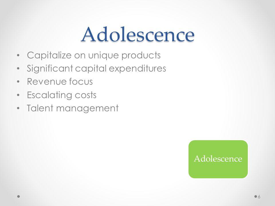 Adolescence Capitalize on unique products Significant capital expenditures Revenue focus Escalating costs Talent management Adolescence 6