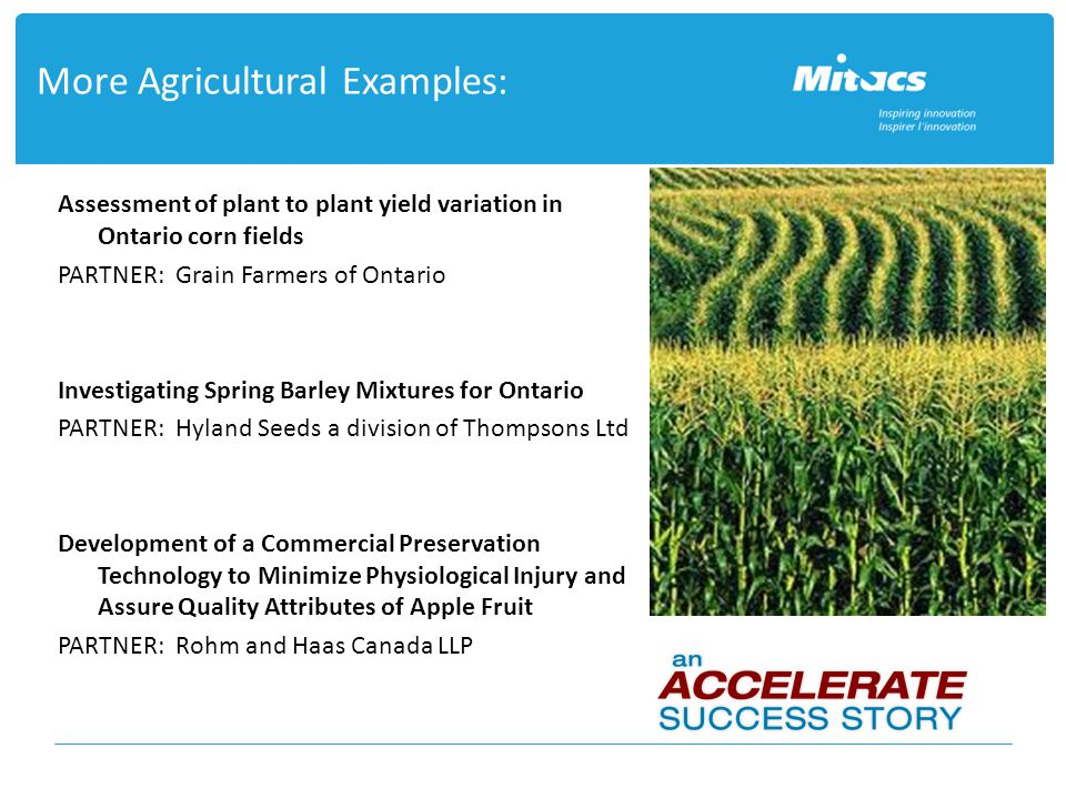 More Agricultural Examples: Assessment of plant to plant yield variation in Ontario corn fields PARTNER: Grain Farmers of Ontario Investigating Spring Barley Mixtures for Ontario PARTNER: Hyland Seeds a division of Thompsons Ltd Development of a Commercial Preservation Technology to Minimize Physiological Injury and Assure Quality Attributes of Apple Fruit PARTNER: Rohm and Haas Canada LLP