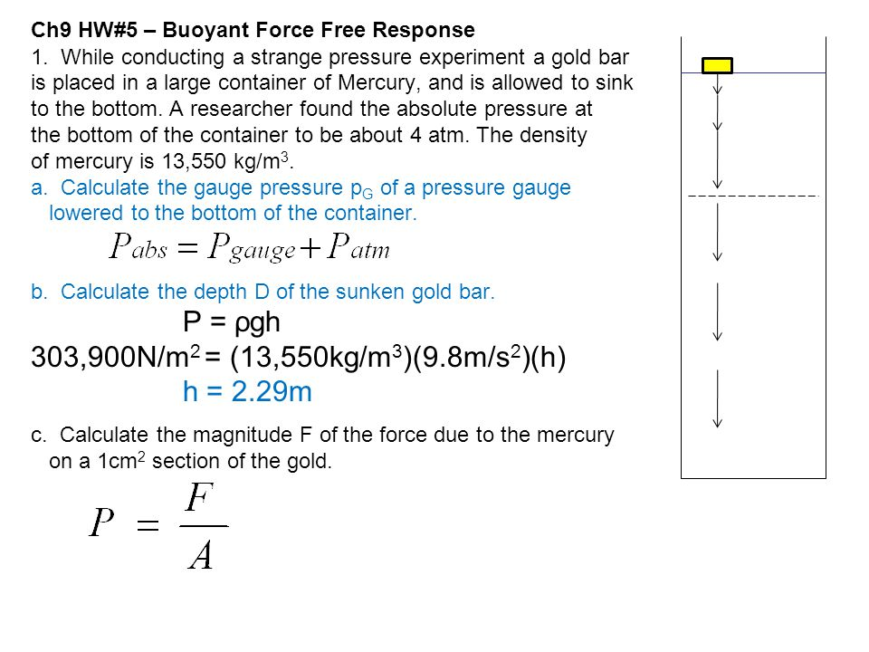 Ch9 HW#5 – Buoyant Force Free Response 1. While conducting a strange pressure experiment a gold bar is placed in a large container of Mercury, and is