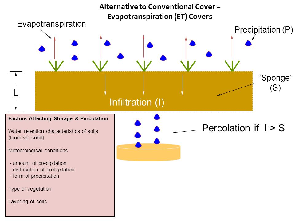 "Precipitation (P) L ""Sponge"" (S) Infiltration (I) Percolation if I > S Evapotranspiration Factors Affecting Storage & Percolation Water retention char"