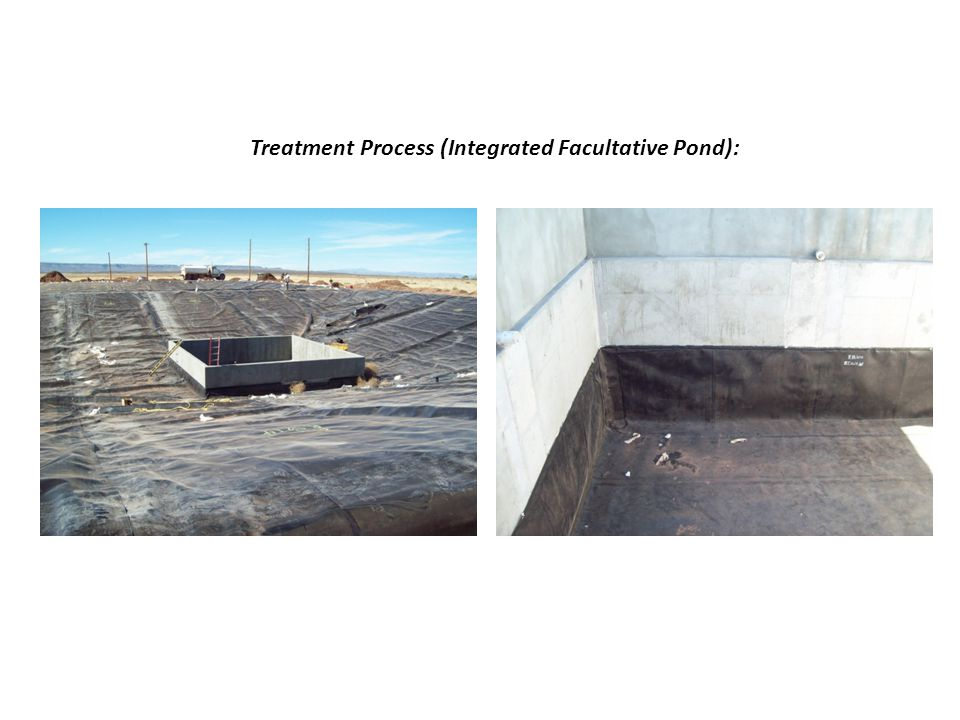 Treatment Process (Integrated Facultative Pond):