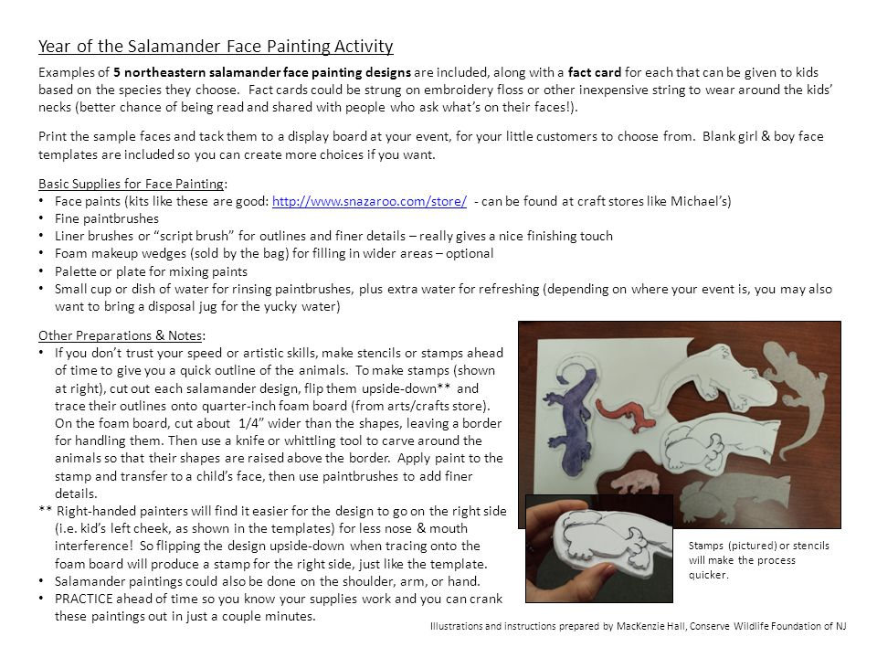 Year of the Salamander Face Painting Activity Examples of 5 northeastern salamander face painting designs are included, along with a fact card for each that can be given to kids based on the species they choose.