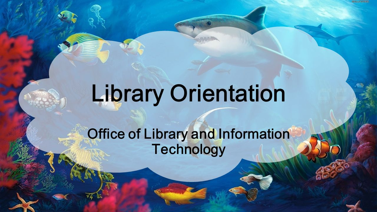 Library Orientation Office of Library and Information Technology
