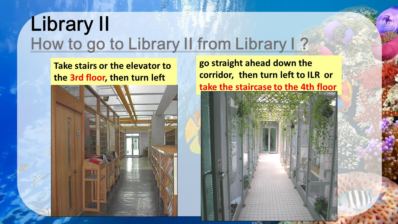 Library II How to go to Library II from Library I ? go straight ahead down the corridor, then turn left to ILR or take the staircase to the 4th floor