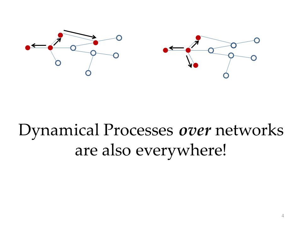 4 Dynamical Processes over networks are also everywhere!