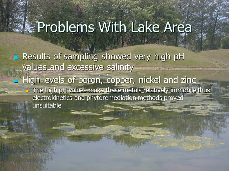 Problems With Lake Area Results of sampling showed very high pH values and excessive salinity Results of sampling showed very high pH values and excessive salinity High levels of boron, copper, nickel and zinc High levels of boron, copper, nickel and zinc The high pH values make these metals relatively immobile thus electrokinetics and phytoremediation methods proved unsuitable The high pH values make these metals relatively immobile thus electrokinetics and phytoremediation methods proved unsuitable