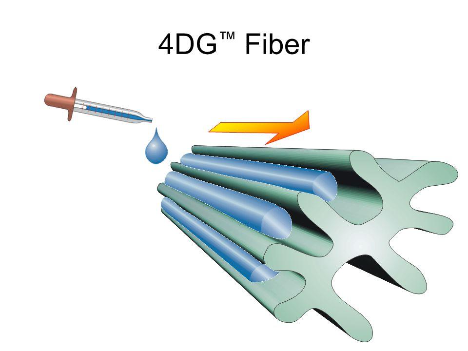 4DG ™ Fiber