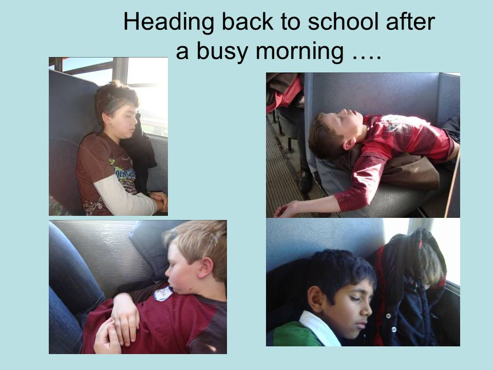 Heading back to school after a busy morning ….