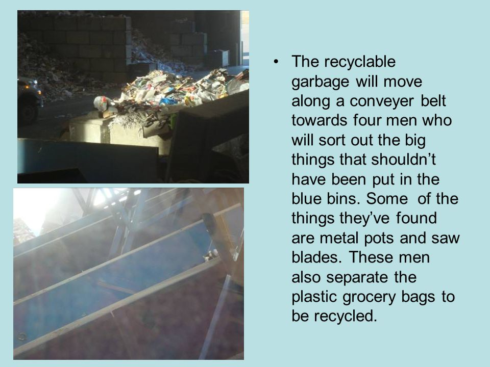 The recyclable garbage will move along a conveyer belt towards four men who will sort out the big things that shouldn't have been put in the blue bins.