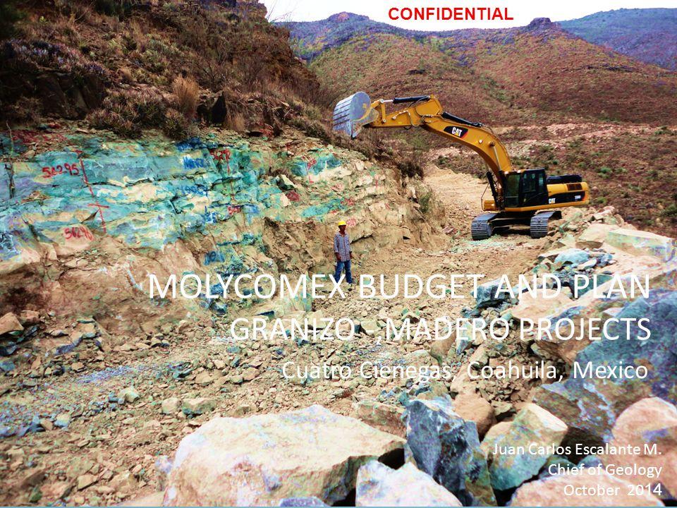 MOLYCOMEX BUDGET AND PLAN GRANIZO -,MADERO PROJECTS Juan Carlos Escalante M.