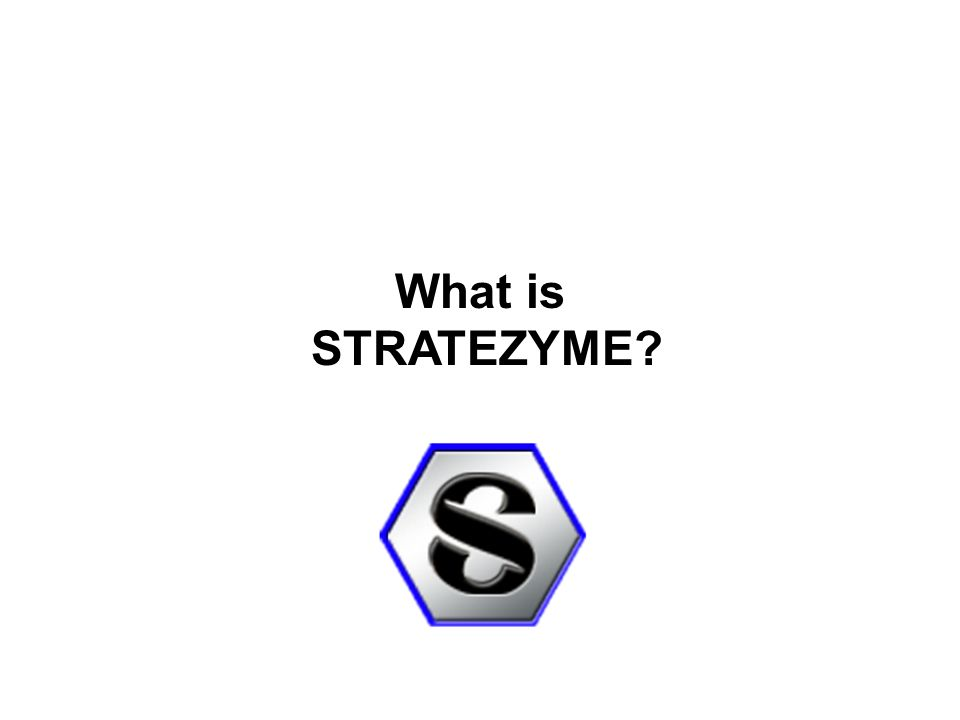 What is STRATEZYME?