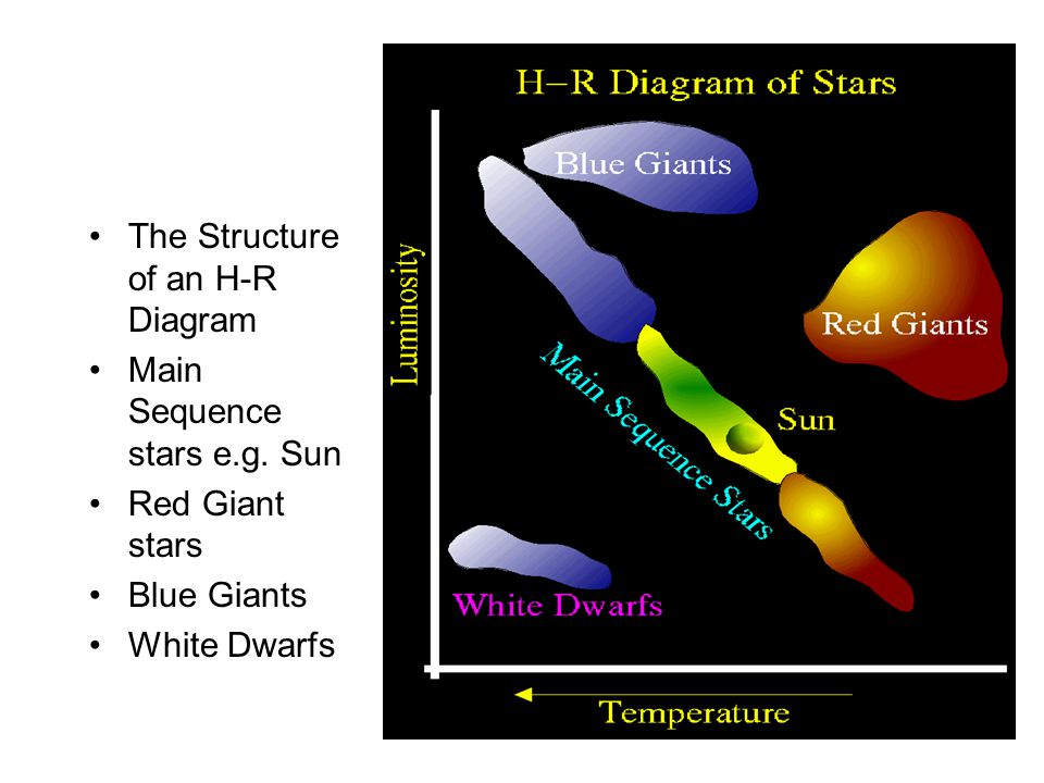 The Structure of an H-R Diagram Main Sequence stars e.g.