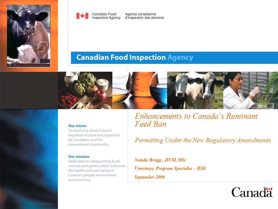 Enhancements to Canada's Ruminant Feed Ban Permitting Under the New Regulatory Amendments Natalie Bragg, DVM, MSc Veterinary Program Specialist – BSE September 2006