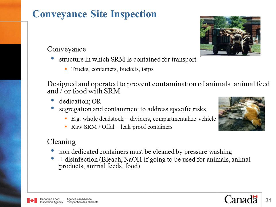 31 Conveyance Site Inspection Conveyance structure in which SRM is contained for transport  Trucks, containers, buckets, tarps Designed and operated to prevent contamination of animals, animal feed and / or food with SRM dedication; OR segregation and containment to address specific risks  E.g.