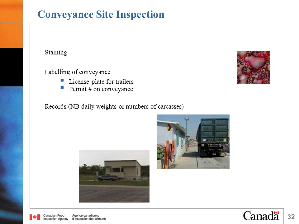 32 Conveyance Site Inspection Staining Labelling of conveyance  License plate for trailers  Permit # on conveyance Records (NB daily weights or numbers of carcasses)