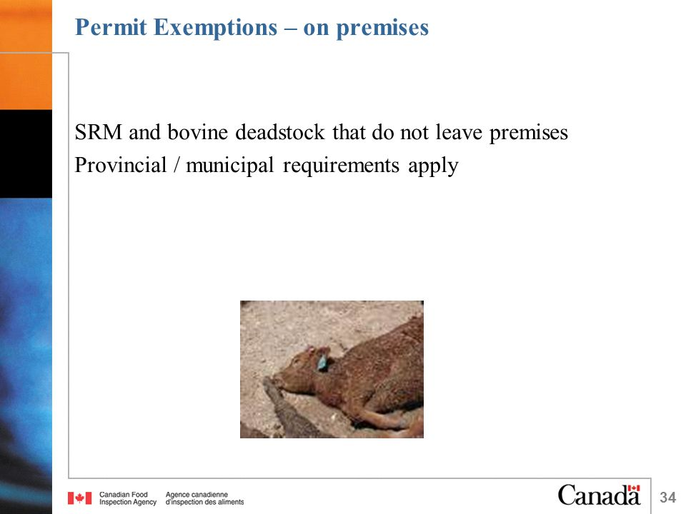 34 Permit Exemptions – on premises SRM and bovine deadstock that do not leave premises Provincial / municipal requirements apply
