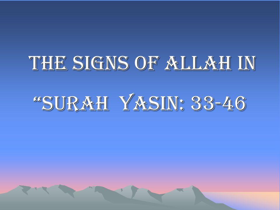 The signs of Allah in Surah Yasin: 33-46 The signs of Allah in Surah Yasin: 33-46