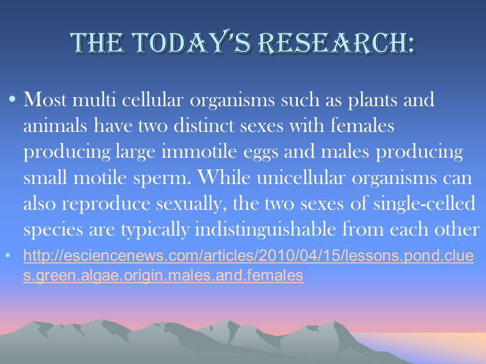 The today's research: Most multi cellular organisms such as plants and animals have two distinct sexes with females producing large immotile eggs and males producing small motile sperm.