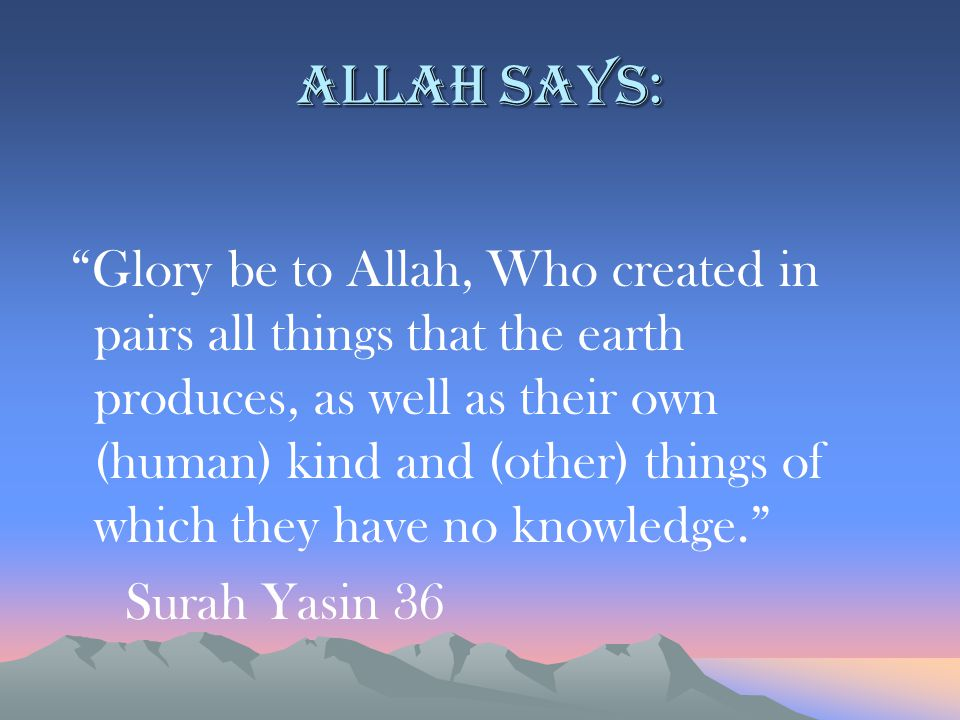 "Allah says: ""Glory be to Allah, Who created in pairs all things that the earth produces, as well as their own (human) kind and (other) things of which"