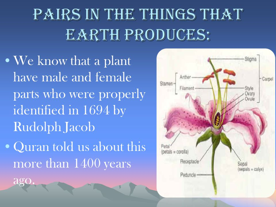 Pairs in the things that earth produces: We know that a plant have male and female parts who were properly identified in 1694 by Rudolph Jacob Quran told us about this more than 1400 years ago.