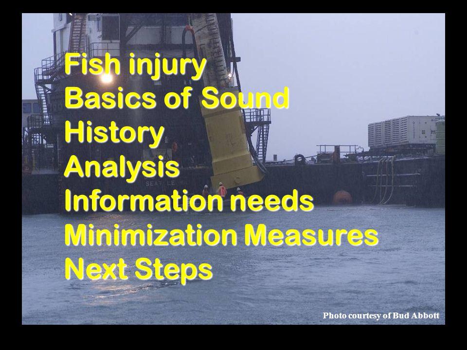 Photo courtesy of Bud Abbott Fish injury Basics of Sound HistoryAnalysis Information needs Minimization Measures Next Steps