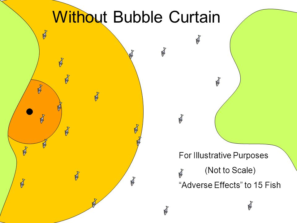 Without Bubble Curtain For Illustrative Purposes (Not to Scale) Adverse Effects to 15 Fish