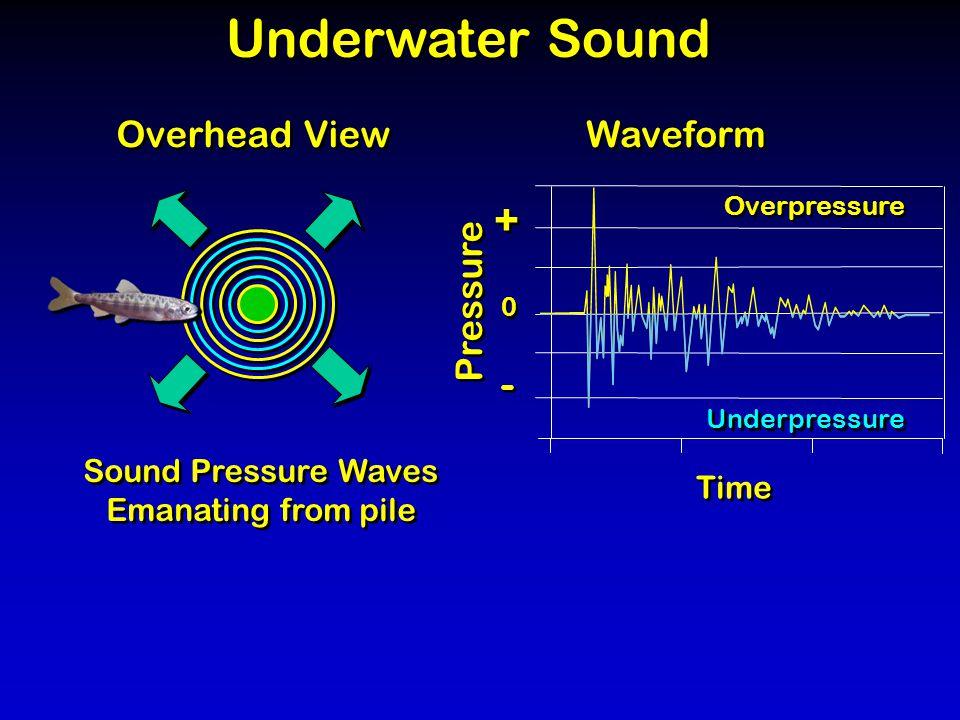 Underwater Sound Sound Pressure Waves Emanating from pile Sound Pressure Waves Emanating from pile Overhead View Pressure Time Overpressure Underpressure 0 0 + + - - Waveform