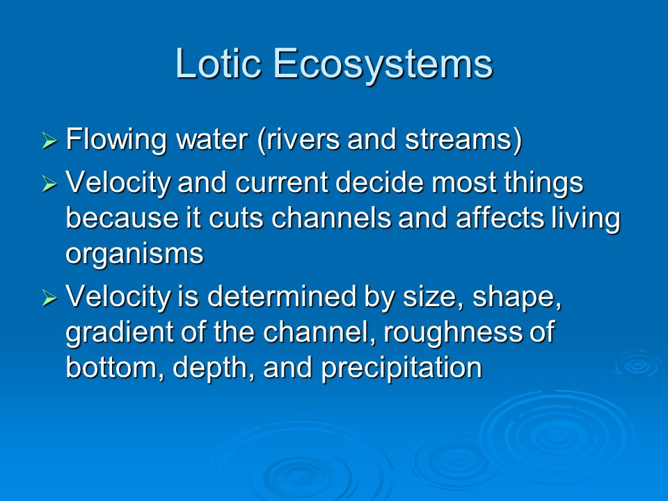 Lotic Ecosystems  Flowing water (rivers and streams)  Velocity and current decide most things because it cuts channels and affects living organisms