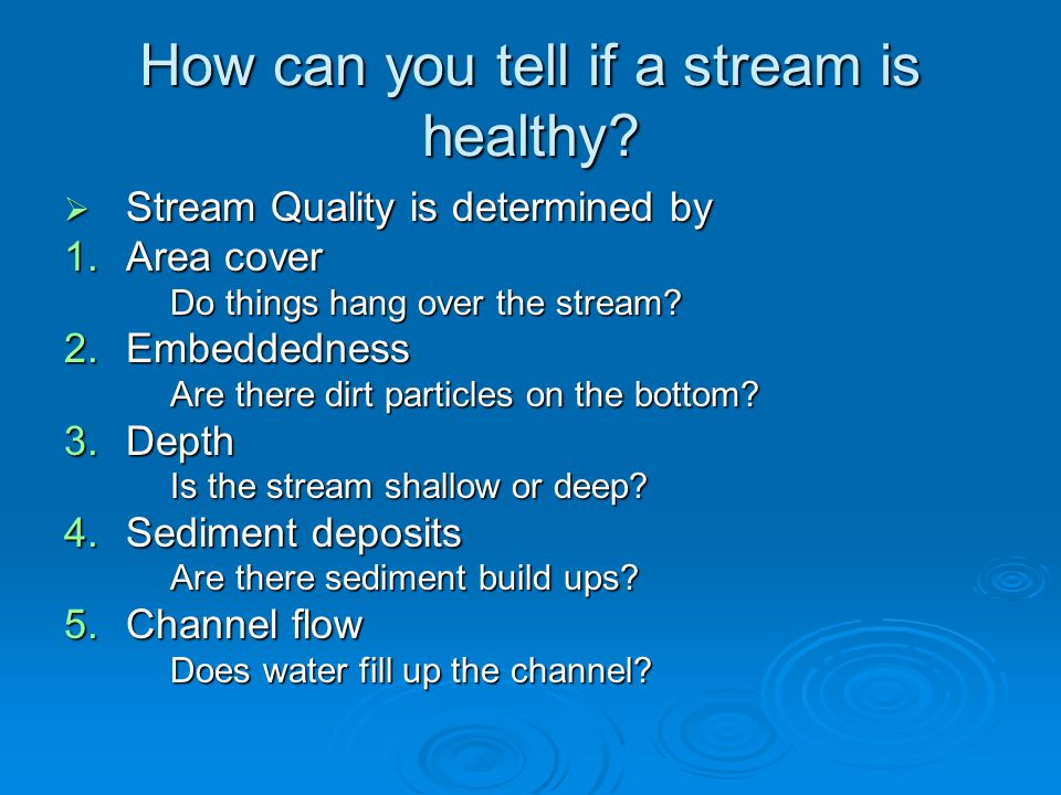 How can you tell if a stream is healthy?  Stream Quality is determined by 1.Area cover Do things hang over the stream? 2.Embeddedness Are there dirt