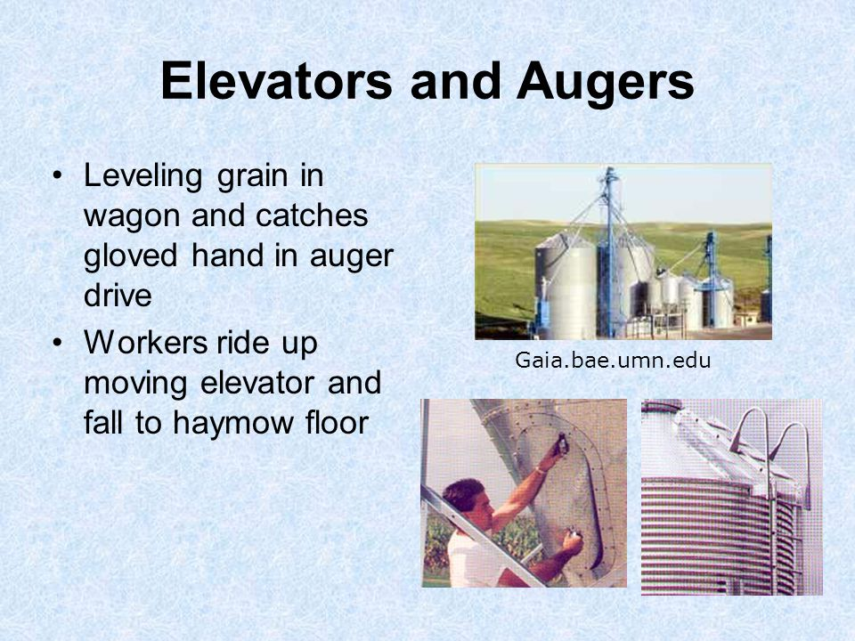 Elevators and Augers Leveling grain in wagon and catches gloved hand in auger drive Workers ride up moving elevator and fall to haymow floor Gaia.bae.umn.edu