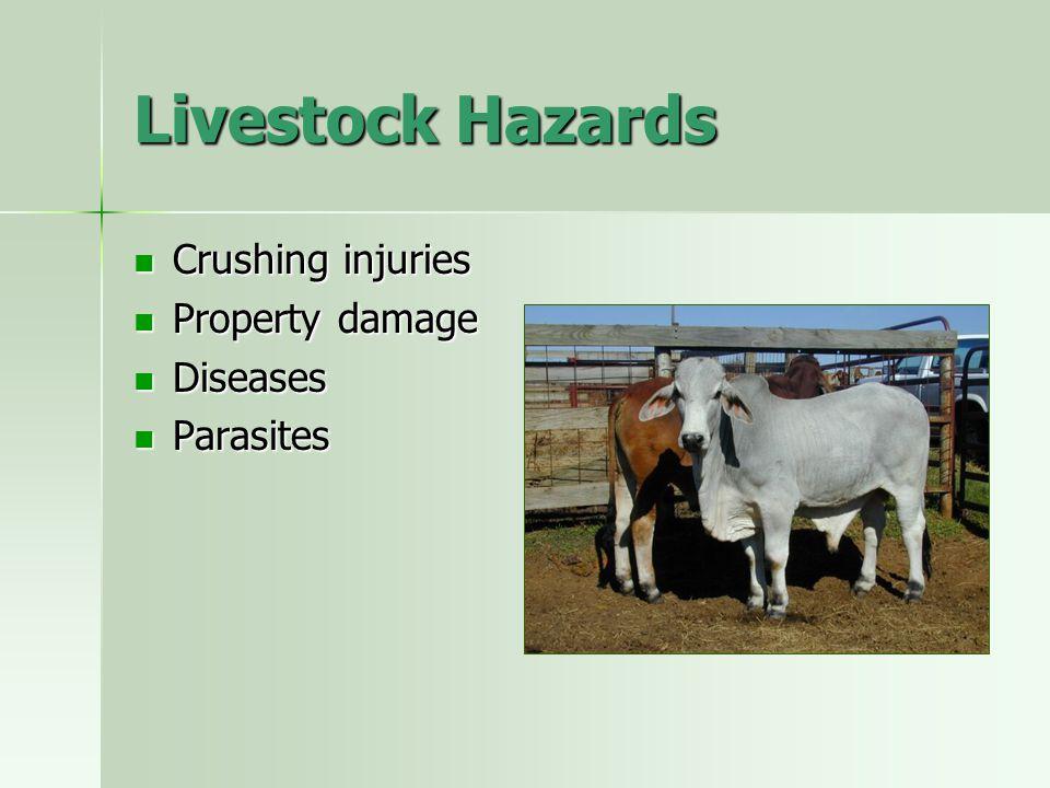 Livestock Hazards Crushing injuries Crushing injuries Property damage Property damage Diseases Diseases Parasites Parasites