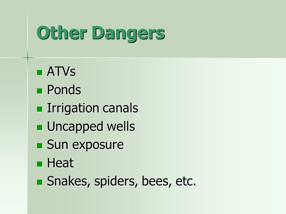 Other Dangers ATVs ATVs Ponds Ponds Irrigation canals Irrigation canals Uncapped wells Uncapped wells Sun exposure Sun exposure Heat Heat Snakes, spid