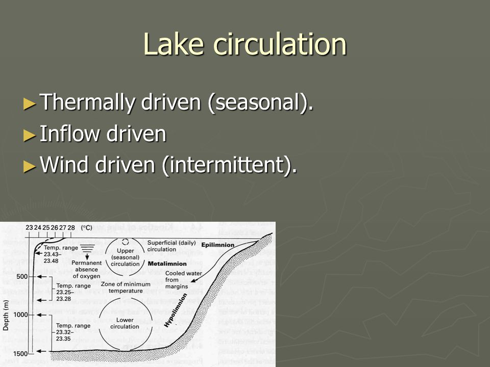 Lake circulation ► Thermally driven (seasonal). ► Inflow driven ► Wind driven (intermittent).