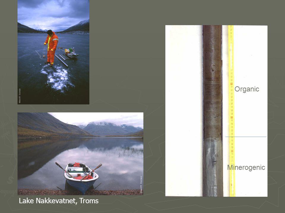 Organic Minerogenic Lake Nakkevatnet, Troms