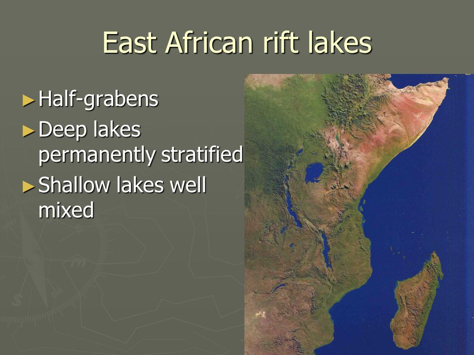 East African rift lakes ► Half-grabens ► Deep lakes permanently stratified ► Shallow lakes well mixed