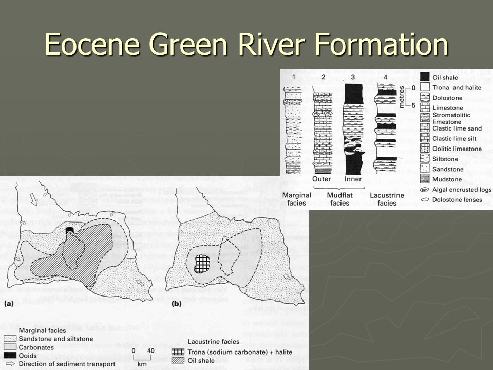 Eocene Green River Formation